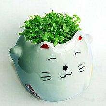 Kungfu Mall DIY Keramik Vase Karikatur Schön Katze Muster Vase Mini Cat Grün Gras Blumentopf Pflanze Desktop Office Dekoration