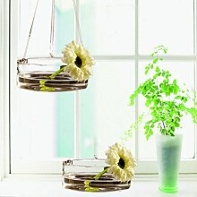 Kungfull Mall Hydrokultur Pflanzen Hänge Glasvase Mit Haken Blumen Topf Garten Decor
