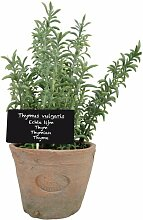 Kunst-Thymianpflanze im Topf Die Saisontruhe