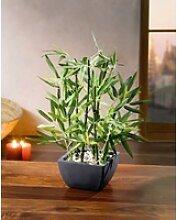Kunstbambus Bambus im Topf Kunstpflanze