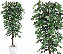 Kunstbaum 200cm Ficus Benjamini grün mit 2064