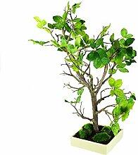 Kunstbaum Buche Bonsai mit Schale 70cm grün