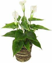 Kunstblume Calla Blumenarrangement im Korb