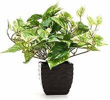 Kunstblume Pothos Pflanze in dekorativem Topf - Täuschend echt mit Blumenerde