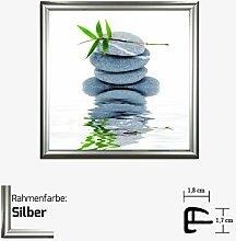 Kunstdruck BRAUN - AQUA IV Kunstdruck Steine/Pflanze/Wasser 30 x 30 cm mit Kunststoff-Bilderrahmen & Acrylglas reflexfrei, viele Farben zur Auswahl, hier Silber