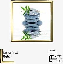 Kunstdruck BRAUN - AQUA IV Kunstdruck Steine/Pflanze/Wasser 30 x 30 cm mit Kunststoff-Bilderrahmen & Acrylglas reflexfrei, viele Farben zur Auswahl, hier Gold