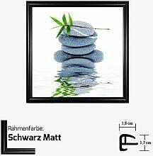 Kunstdruck BRAUN - AQUA IV Kunstdruck Steine/Pflanze/Wasser 30 x 30 cm mit Kunststoff-Bilderrahmen & Acrylglas reflexfrei, viele Farben zur Auswahl, hier Schwarz Ma