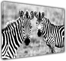 """Kunstdruck Foto auf Leinwand Art Images d Afrika Wild Zebra Schwarz Und Weiß Motiv Foto bedruckt Dekoration des Hauses, schwarz / weiß, 5- A2 - 16"""" X 24"""" (40CM X 60CM)"""