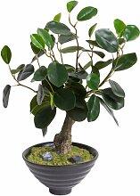 Kunstpflanze Bonsai in Topf Die Saisontruhe