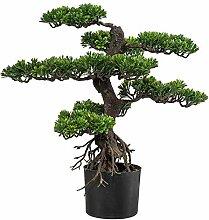 Kunstpflanze Bonsai Zeder grün, im