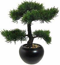 Kunstpflanze Bonsai Zeder grün, im schwarzen