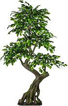 KUNSTPFLANZE Ficus Benjamina