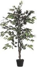 Kunstpflanze »Ficus Benjamini«, Paperflow