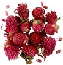 Kunstpflanze Rosenknospen, VBS lila