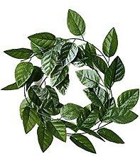 Kunstpflanzen 200cm Seidenblätter Hängende