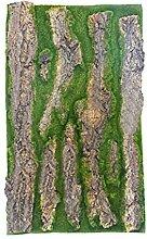 Kunstpflanzen Simulation Pflanze Baumrinde