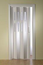 Kunststoff - Falttür mit 2 Fenster Luciana weiß