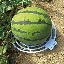 æ— Kunststoff-Melonenstütze, 6 Stück, für