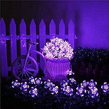 Kyson 50er LED Solar Lichterkette Blumen Garten