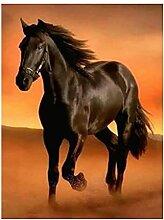KYYBAX 5D Diamant Malerei Set Schwarzes Pferd bei