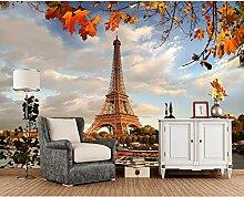 Kyzaa Frankreich Herbst Eiffelturm Paris Städte
