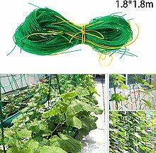 LACKINGONE Pflanzenkletternetz Gartenschutznetz