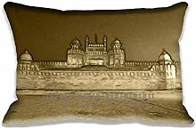 lal Qila oldy Pillow Cases Protector 20x30 inch Sofa Bed Home D¨¦cor Standard Size Pillow Covers(Twin Sides)
