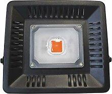 Lampe de Croissance pour Plantes 50W LED-Anlage