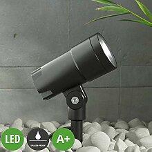 Lampenwelt LED Außenleuchte 'Daja'