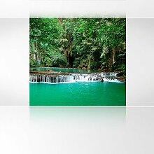 LanaKK - Dschungel - Fototapete Poster-Tapete - edler Kunstdruck auf Vliestapete in 180x180 cm