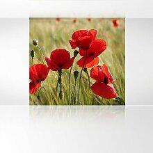 LanaKK - Mohnblumen - Fototapete Poster-Tapete - edler Kunstdruck auf Vliestapete in 180x180 cm