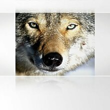 LanaKK - Wolf - Fototapete Poster-Tapete - edler