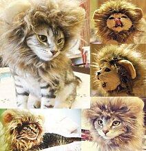 Lanlan Löwenkostüm für Katze Fancy Kleid Up? Blender M?