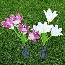 LanLan Solarbetriebene 4 Kopf Lily Pin Lampe Mode kreative Nachtlicht Hof Garten Dekoration 2 Pcs