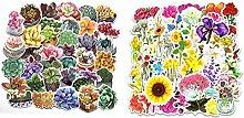 Laptop-Aufkleber Pflanze & Blume