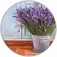 Lavendel (Lavandula angustifolia) - ca. 50
