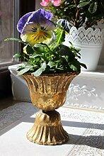 LB H&F Übertopf Blumentopf Metall Gold Amphore