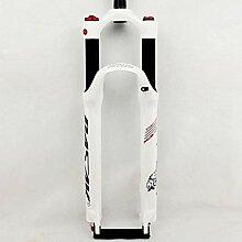 LBBL Fahrrad MTB Gabel Carbon Gabelschaft