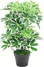 Leaf Künstlicher Schefflera Arboricola