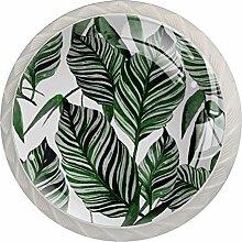 Leaves1 Türknauf, Glas, für Schrank, Schrank,