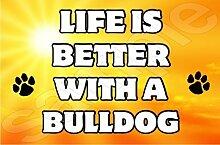Leben ist besser mit einer Bulldogge