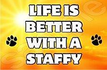Lebensdauer ist besser mit A Staffy Hund - Jumbo Magnet/Jubiläum