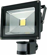 LED-Außenleuchte, Bewegungssensor, 20W, 1600lm, Lichttemperatur 6000K, AC 230V, schwarz