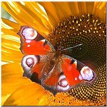 LED-Bild Schmetterling Wand Dekoration Bild Licht