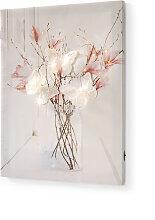 LED-Bild Schmetterlinge, weiß
