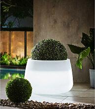 LED-Blumentopf Weiß