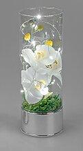 LED Deko Lampe Zylinder mit Orchidee Zylinder H.