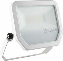 LED-Fluter FLPFM50W3000KSYM100W - Ledvance