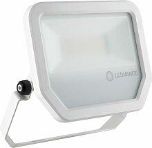 LED-Fluter FLPFM50W6500KSYM100W - Ledvance