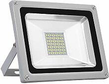 LED Fluter, Papasbox 30W LED Strahler Flutlicht,